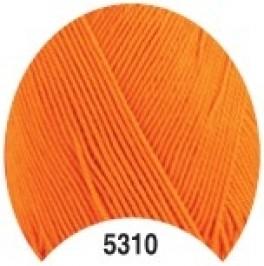 ALMINA5310-20