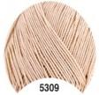 ALMINA 5309